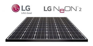 Renewable Power Technologies LG-Neon Home New